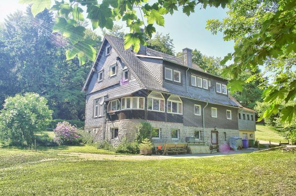 gruppenhaus sauerland grandvilla in willingen upland - Villa Sauerland